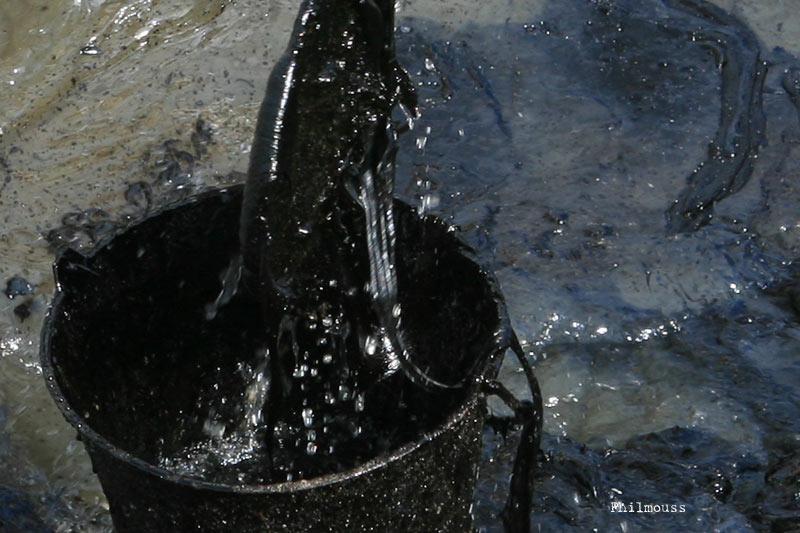 S ance 1 1 bis les nergies fossiles et renouvelables for A quoi sert le gaz naturel